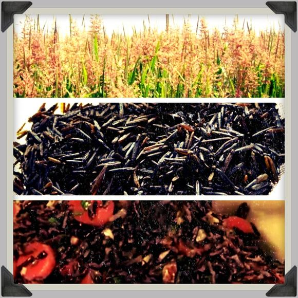 Wild rice or change starts with a small step
